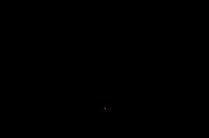 havu logo blk